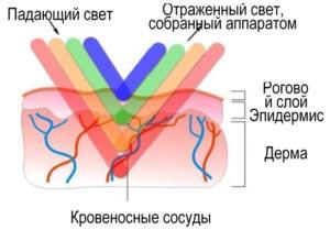 Дерматолог VS Косметолог